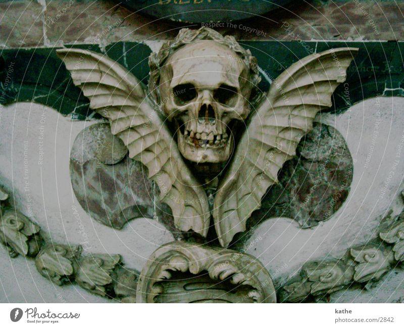 uaha Tod Religion & Glaube historisch Dom Schädel Marmor Paddel Fledermäuse