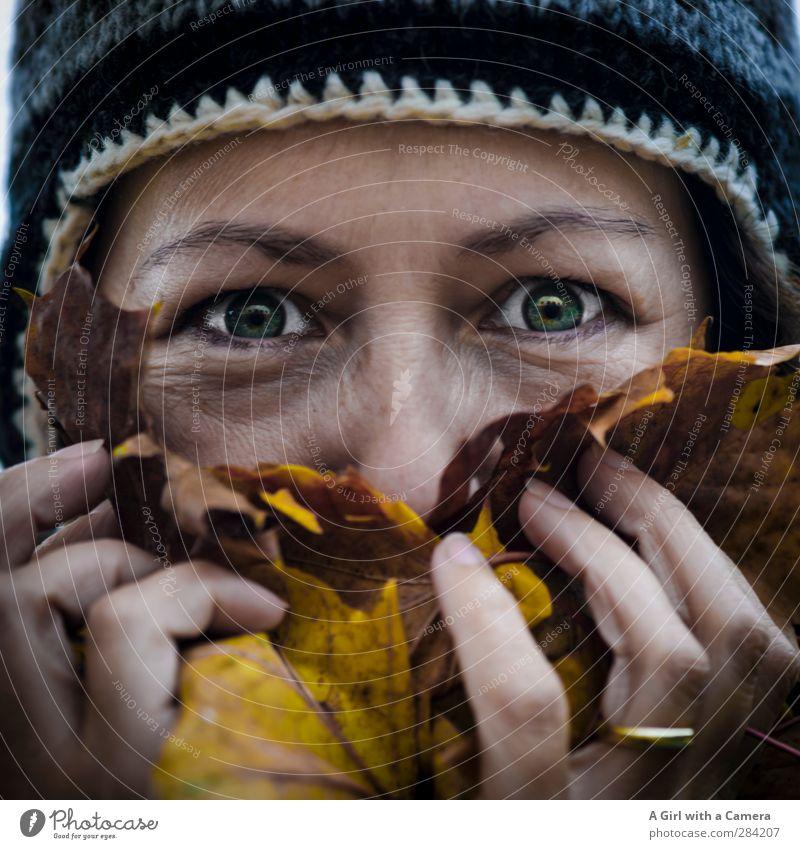 c'est moi eating leaves Mensch Frau Freude Erwachsene Auge feminin Leben lachen lustig festhalten Herbstlaub Geruch 30-45 Jahre Wollmütze
