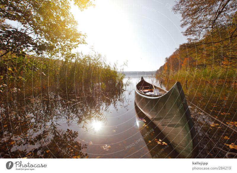 indianerland Natur Ferien & Urlaub & Reisen Pflanze Baum ruhig Landschaft Wald Ferne Umwelt Herbst Sport Küste Freiheit Wasserfahrzeug Freizeit & Hobby