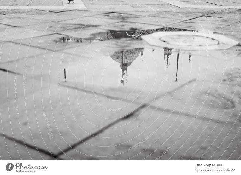 piazza Ferien & Urlaub & Reisen Tourismus Wasser Regen Venedig Italien Stadt Kirche Platz Markusplatz nass Pfütze Taube Kuppeldach Schwarzweißfoto Außenaufnahme
