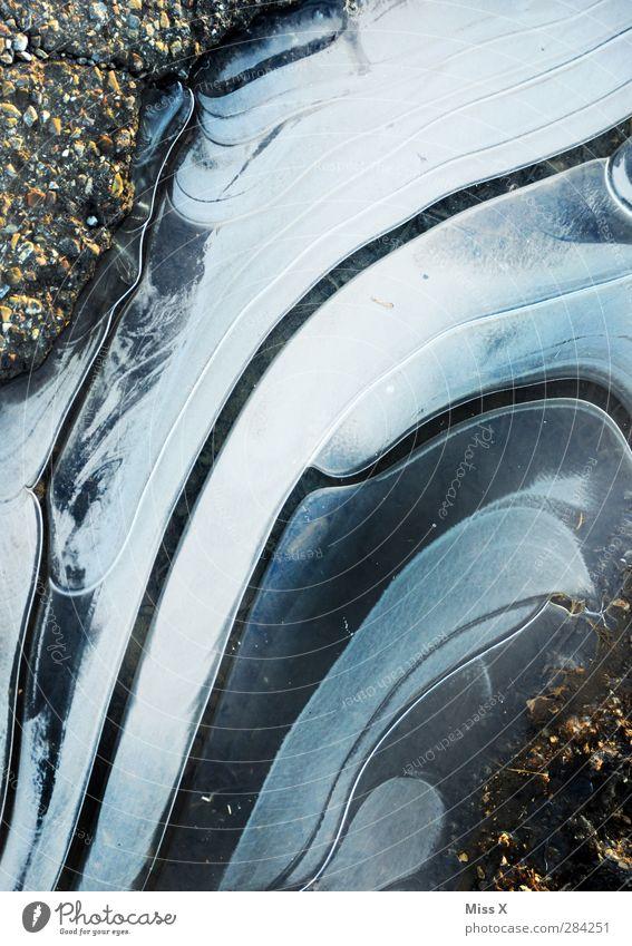 Pfütze Wasser Winter kalt Eis Frost Luftblase Eisblumen Schlagloch