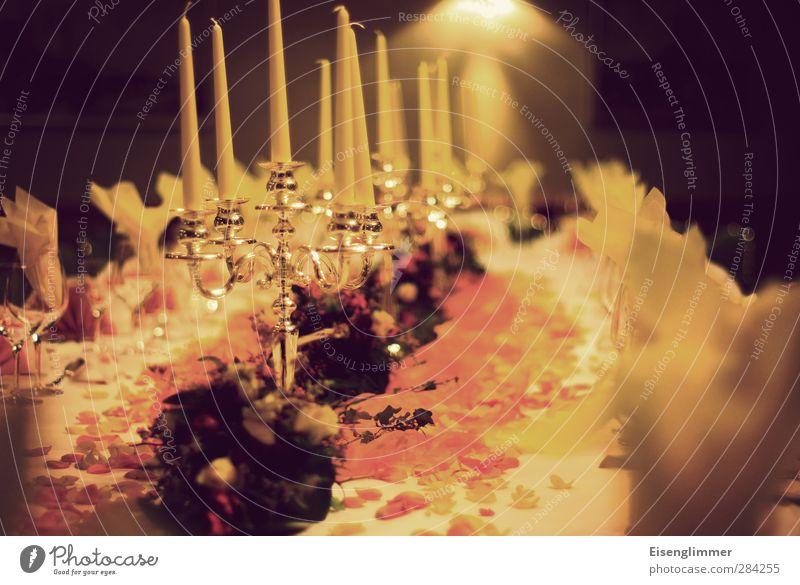 Festtagstafel Dekoration & Verzierung Essen Feste & Feiern Geburtstag Kerze Kerzenständer Kerzenstimmung Serviette blumenschmuck Tischdekoration Speisetafel