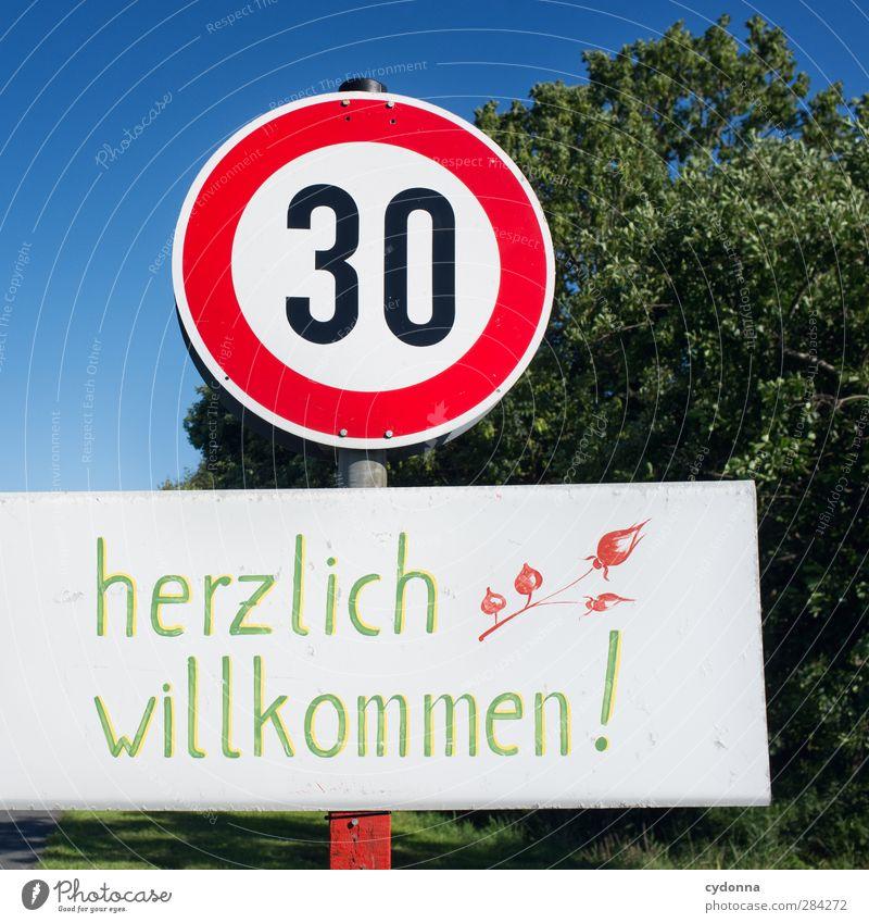 Mit 30 wird alles anders? Natur alt Baum Umwelt Leben 18-30 Jahre Zeit Angst Geburtstag Schilder & Markierungen Zukunft Lifestyle Schriftzeichen Hinweisschild