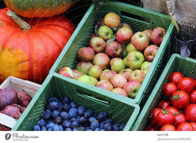 Wochenmarkt Lebensmittel Gemüse Frucht Apfel Ernährung blau mehrfarbig gelb grün orange rosa rot Gemüsemarkt Gemüsehändler Obstkiste Obst- oder Gemüsestand
