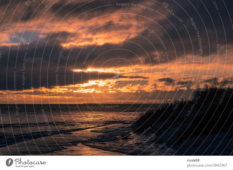 Ostseeküste bei Klintholm Havn in Dänemark Erholung Ferien & Urlaub & Reisen Tourismus Strand Meer Wellen Natur Landschaft Wasser Wolken Herbst Küste blau gelb