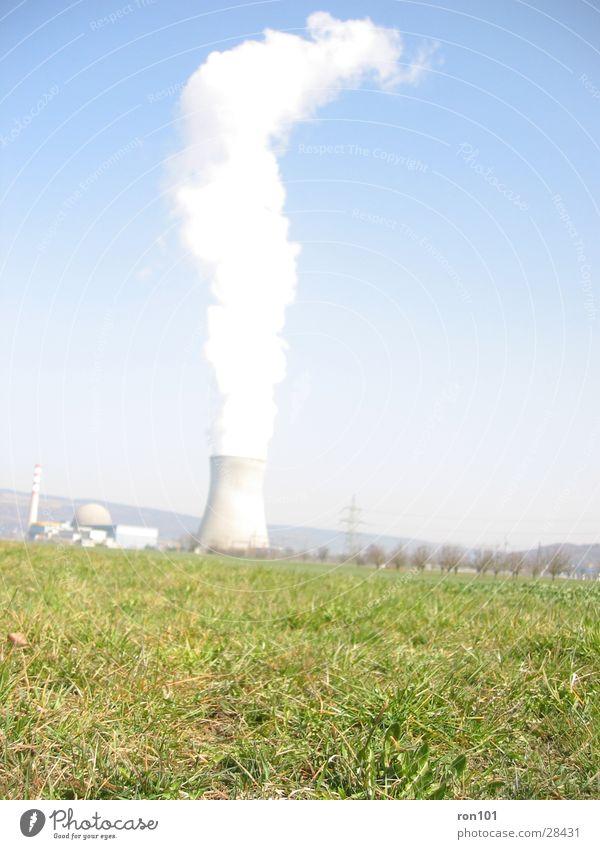 dampfmaschine grün Wiese Architektur Rauch Wasserdampf Kernkraftwerk Kühlturm