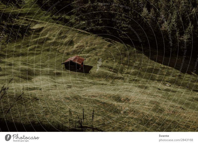 Hütte auf einem grünen Hügel Ferien & Urlaub & Reisen Tourismus Berge u. Gebirge wandern Natur Landschaft Feld Wald Haus Mittenwald Bayern Holzhaus Farbfoto