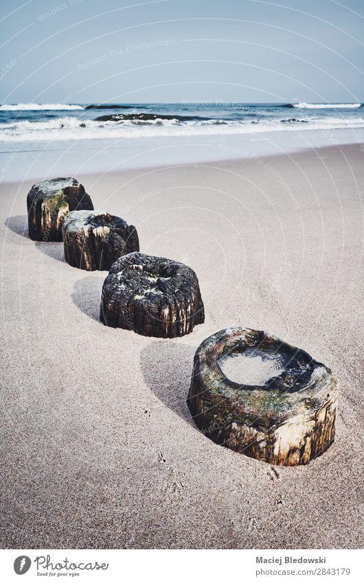 Alte hölzerne Wellenbrecherreste an einem Strand. Ferien & Urlaub & Reisen Sommer Sommerurlaub Meer Insel Natur Landschaft Himmel Horizont Küste Holz alt Wasser