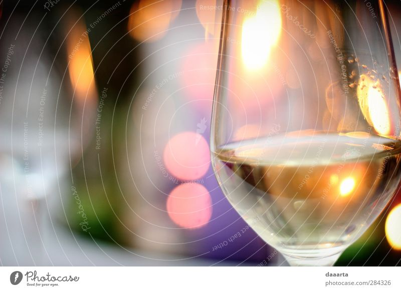 Wärme feminin Feste & Feiern Stimmung elegant Glas verrückt Getränk genießen Abenteuer einfach Hochzeit trinken Kitsch Wein Veranstaltung