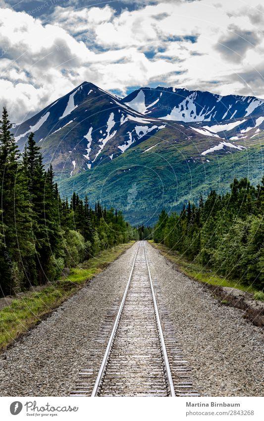 Railroad to Denali National Park, Alaska Ferien & Urlaub & Reisen Tourismus Abenteuer Freiheit Berge u. Gebirge Natur Landschaft Himmel Gipfel