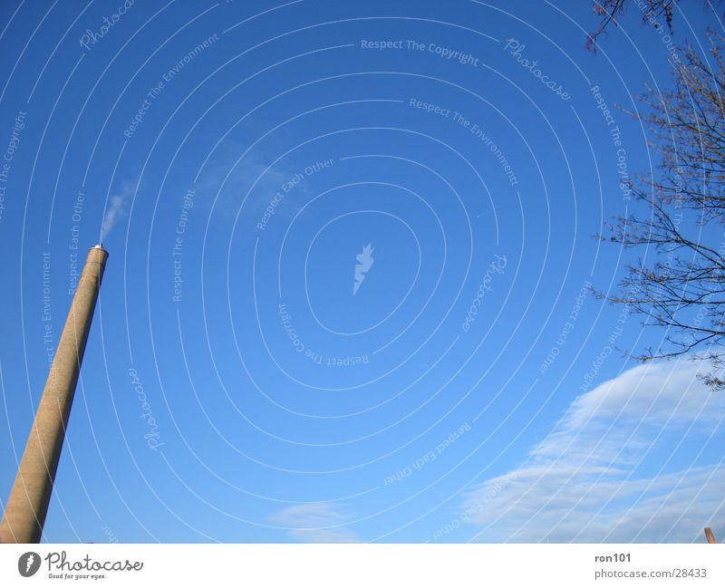 schornstein Baum Wolken Backstein Architektur Schornstein Ast Himmel Rauch blau Froschperspektive Menschenleer Außenaufnahme Farbfoto Wolkenschleier