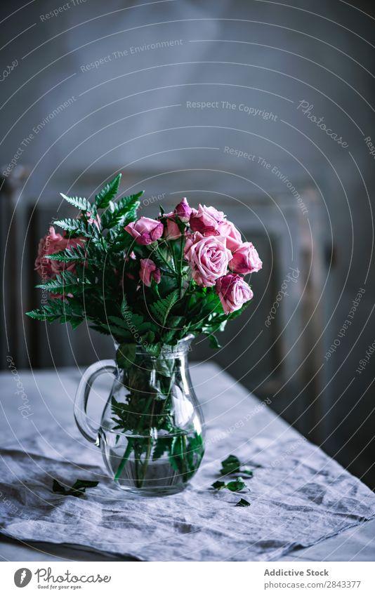 Strauß rosa Rosen auf dem Tisch Blumen Studioaufnahme Kuscheltier Rosas casa decoración en casa jarrón schön Glas Kannen Natur Liebe Beautyfotografie Farbe
