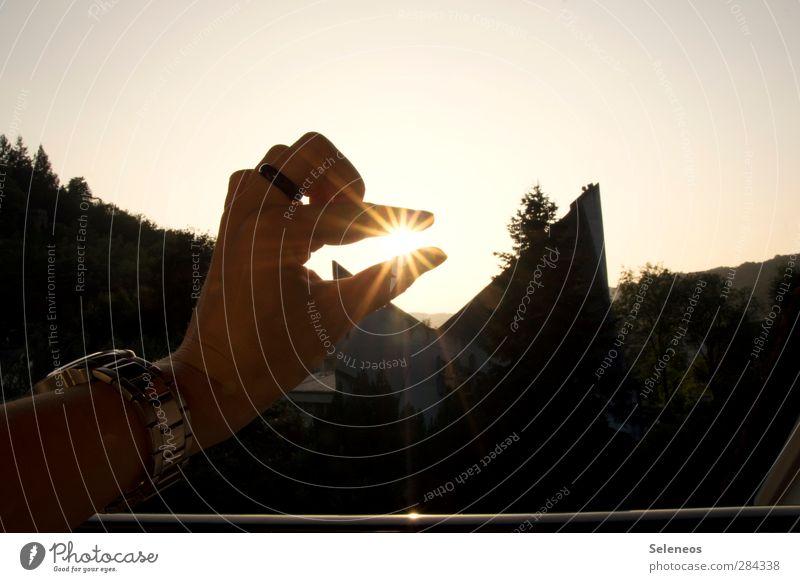 ein Sommer zum festhalten Ferien & Urlaub & Reisen Ferne Freiheit Mensch Hand Finger 1 Umwelt Natur Wolkenloser Himmel Horizont Sonne Schönes Wetter Pflanze