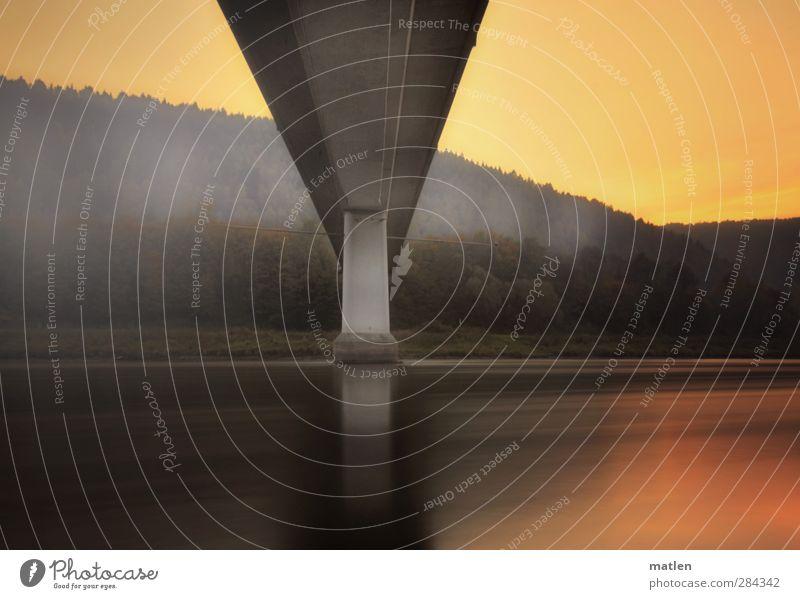 goldener Mittelweg Natur Landschaft Himmel Wolkenloser Himmel Sonnenaufgang Sonnenuntergang Wetter Schönes Wetter Baum Wald Flussufer Brücke Personenverkehr