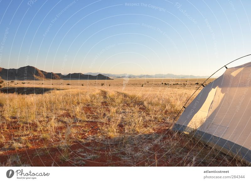 Camp in der Namib Ferien & Urlaub & Reisen Freiheit Safari Camping Natur Landschaft Wolkenloser Himmel Sonnenaufgang Sonnenuntergang Schönes Wetter Wärme Wüste
