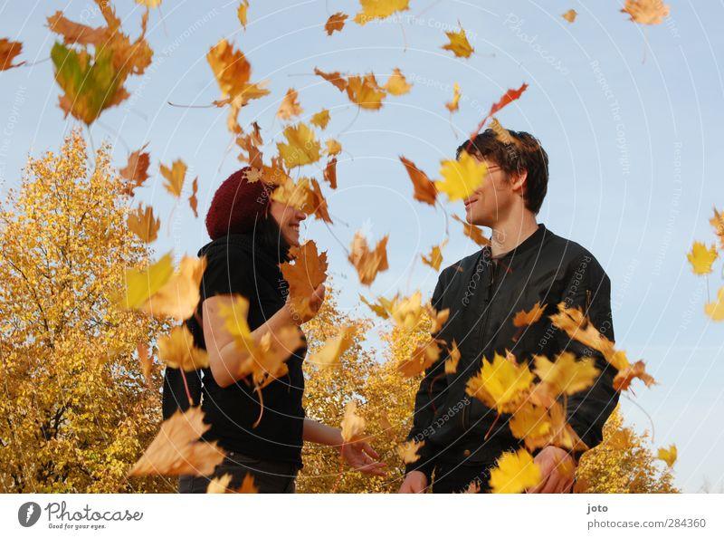 Blätterregen Mensch Natur Jugendliche Baum Freude Blatt Leben Liebe Bewegung Herbst Glück Paar Freundschaft Zusammensein Lächeln Fröhlichkeit
