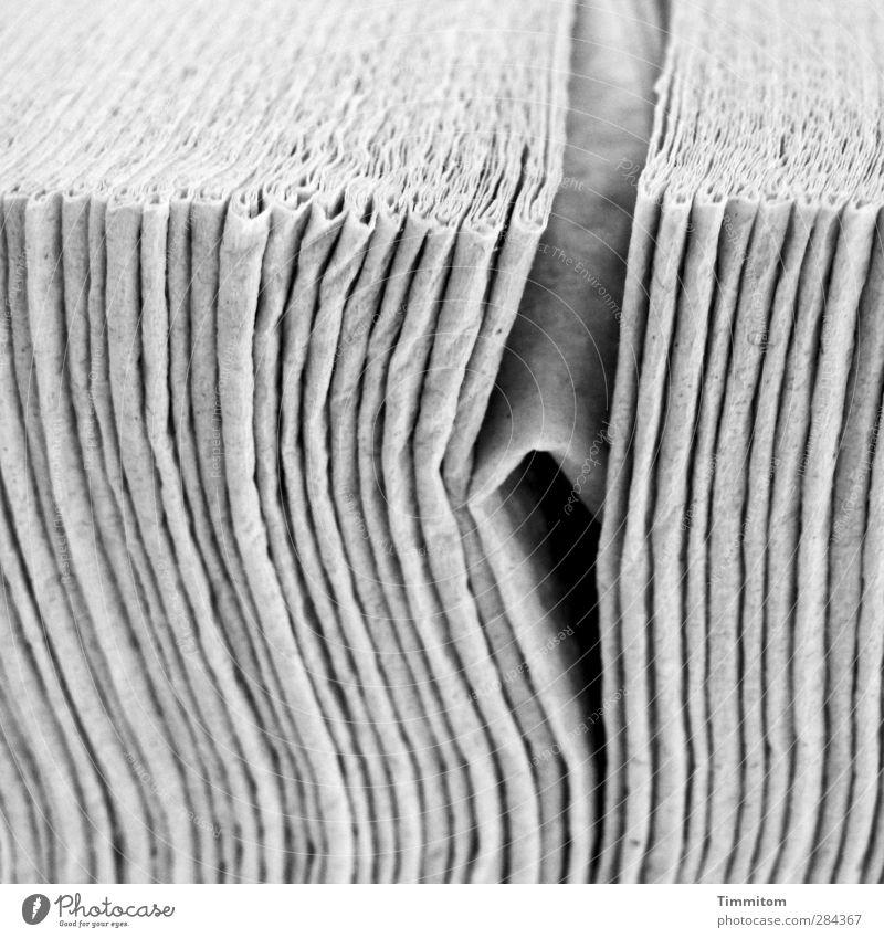 No No No Körperpflege Papier warten ästhetisch Coolness einfach grau schwarz Gefühle Irritation verweigern gekrümmt nein Papiertuch gefaltet no Quertreiber