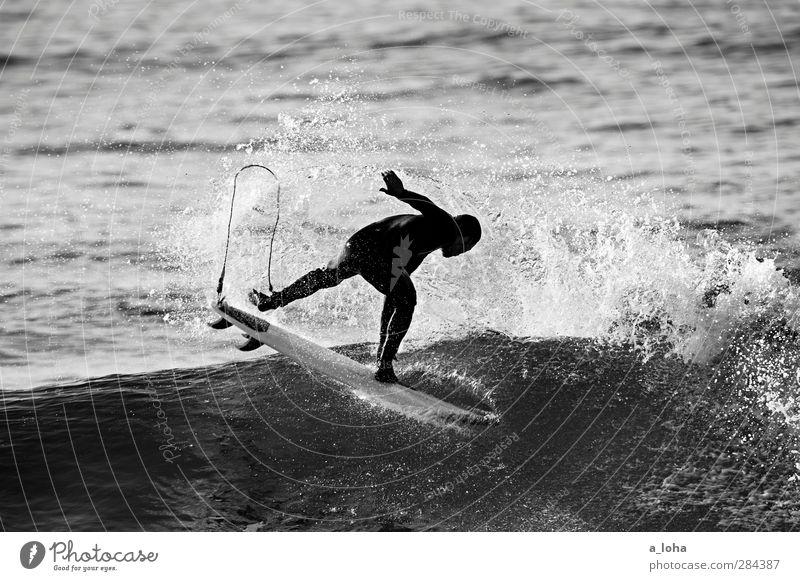 ocean love Mensch Natur Mann Wasser Sommer Meer Erwachsene Leben Sport Bewegung Küste Wellen Kraft Freizeit & Hobby Zufriedenheit maskulin