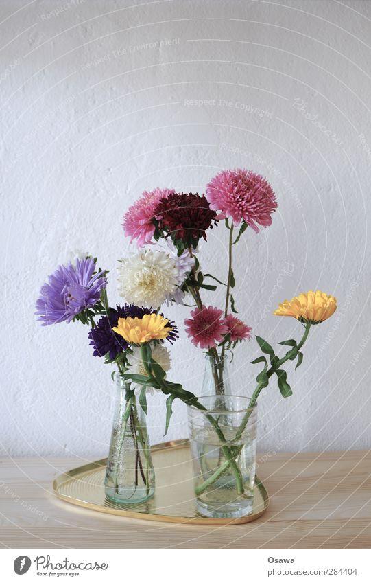 Blümchen Blume Blumenstrauß Pflanze Blüte mehrfarbig Glas Vase Tablett Holz Wand Geburtstag gelb violett rosa grün Menschenleer