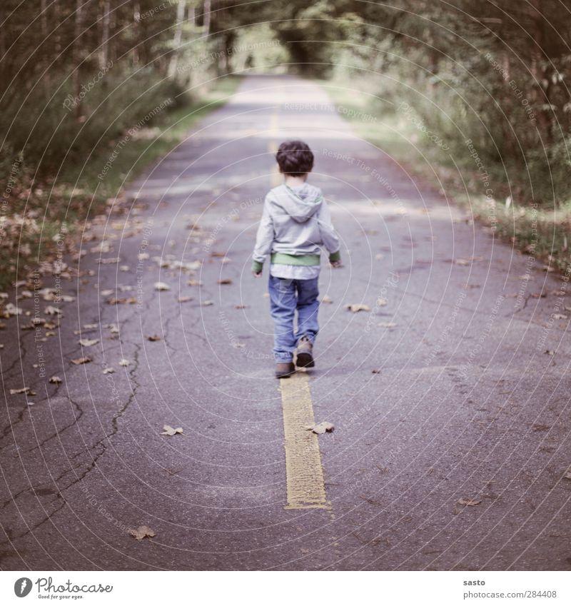 seinen weg gehen Mensch Kind Natur grün Blatt Wald gelb Straße Herbst Junge grau Freiheit Kindheit maskulin authentisch