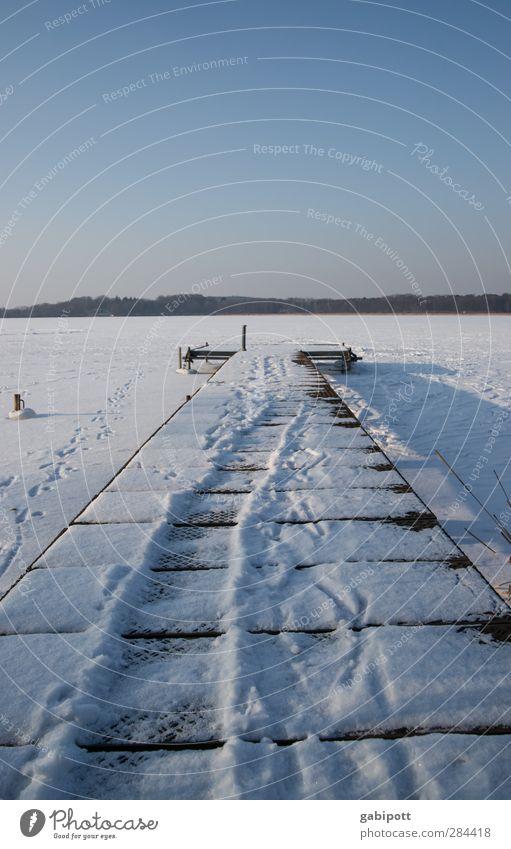 gradewegs in den Winter Ferien & Urlaub & Reisen blau Erholung ruhig Ferne kalt Wege & Pfade Zeit See Horizont Eis Kraft Idylle Wandel & Veränderung Hoffnung
