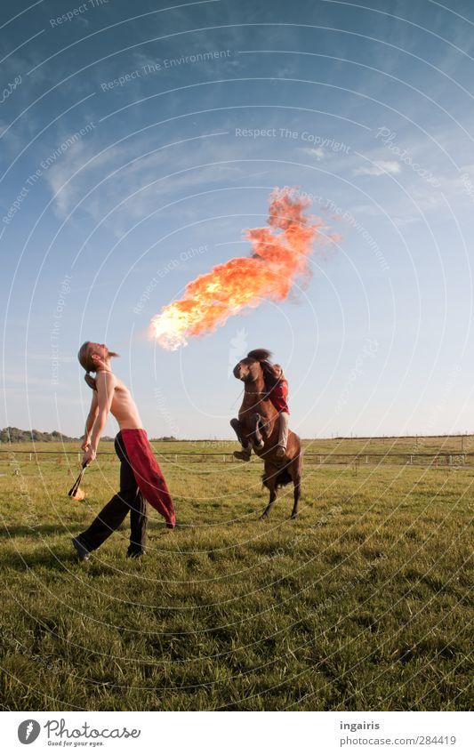 Feuerprobe Mensch Himmel Jugendliche Freude Tier Wolken Landschaft Wiese Junge Frau feminin Gras Junger Mann Kunst Körper außergewöhnlich Freizeit & Hobby