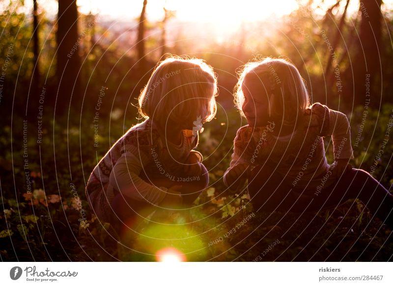 small things in life Mensch Kind Natur Sommer Sonne Mädchen Wald Umwelt Herbst feminin Glück Familie & Verwandtschaft Zusammensein leuchten Kindheit frei