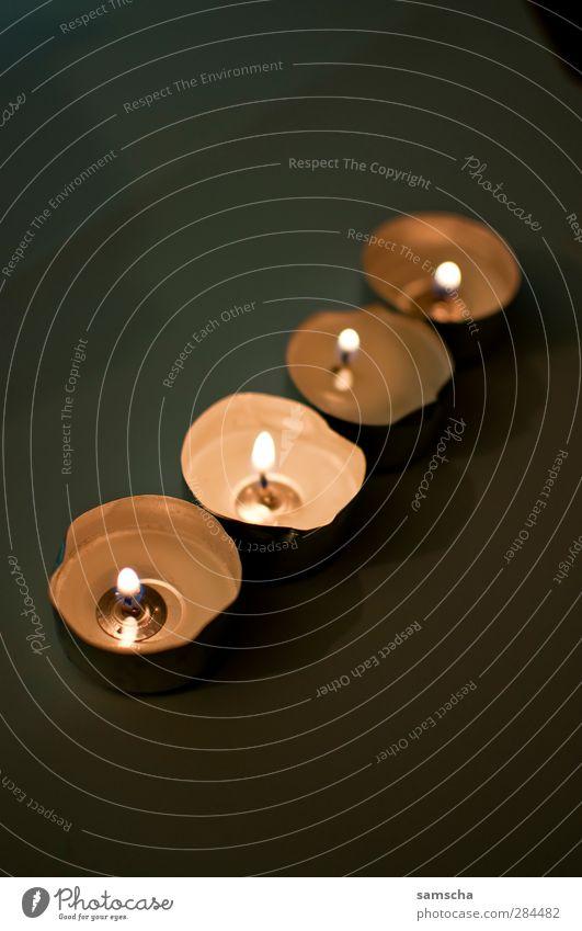Kerzenlicht Weihnachten & Advent dunkel heiß hell Wärme Geborgenheit Warmherzigkeit Kerzenschein Kerzendocht Kerzenstimmung Kerzenflamme brennen erhellend