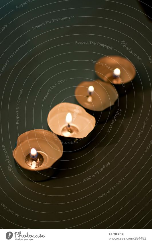 Kerzenlicht Weihnachten & Advent ruhig Winter dunkel Wärme hell Anti-Weihnachten Warmherzigkeit Feuer Kerze heiß erleuchten Reihe brennen Flamme Geborgenheit