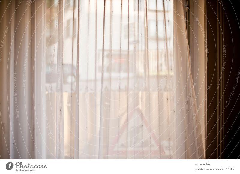 Fenster zur Strasse Häusliches Leben Wohnung Wohnzimmer Stadt Straße dunkel Vorhang Fensterblick Schleier Blick Blick nach vorn Außenaufnahme Innenaufnahme