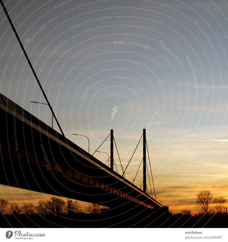 150 Theodor-Heuss-Brücke Natur Himmel Wolken Nachthimmel Sonnenaufgang Sonnenuntergang Herbst Winter Schönes Wetter Baum Rheinpromenade Flussufer Rheinwiesen