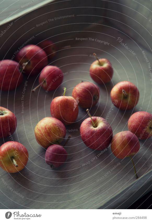 Äpfelchen Frucht Apfel Ernährung Bioprodukte Vegetarische Ernährung Diät Tablett frisch Gesundheit lecker Farbfoto Innenaufnahme Nahaufnahme Menschenleer Tag