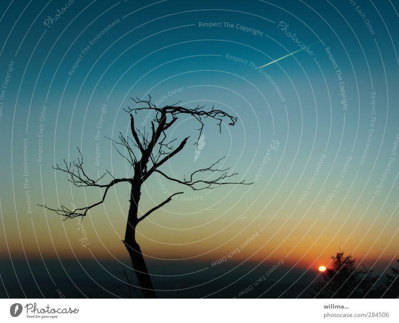 Gegenwehr - Natur und Technik Baum kahl Düsenjäger wehren Kondensstreifen Kraft Umweltschutz Ferne Komet Sternschnuppe widersetzen Angriff standhaft Abend