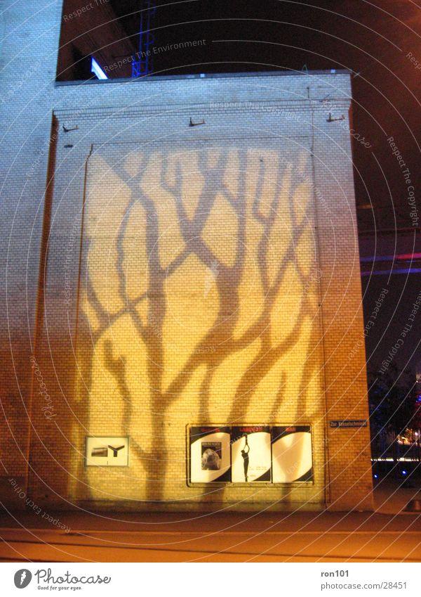 projektion Fabrikhalle Gebäude Wand gelb Baum Architektur alt Beleuchtung orange Projektion
