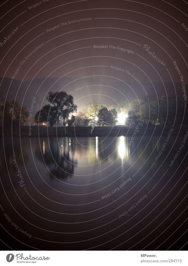 nightlight Club Disco kalt Licht Elbe Reflexion & Spiegelung Wasser Baumkrone Scheinwerfer dunkel Nebel Lichterscheinung Laterne Flutlicht Erscheinung UFO