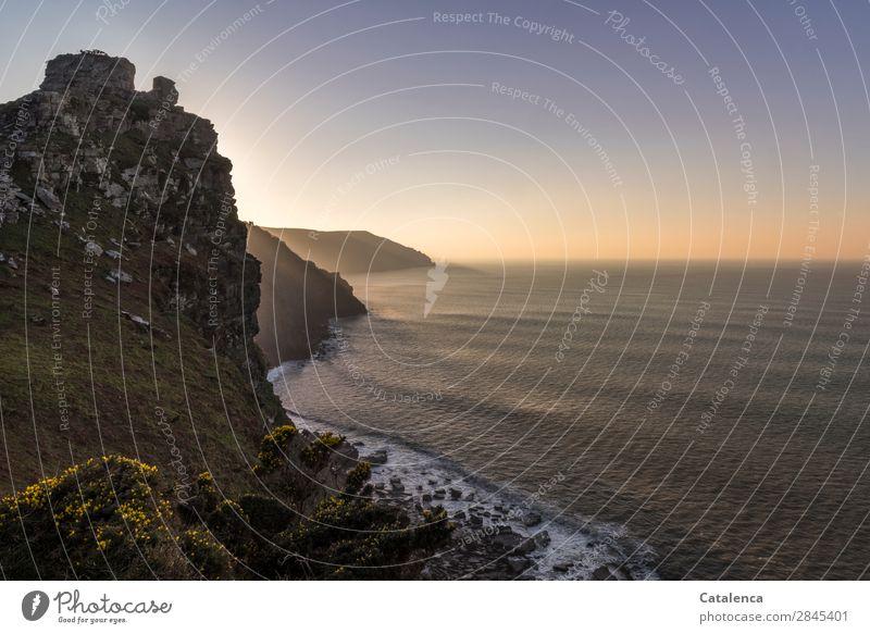Dämmerung Strand Meer Berge u. Gebirge wandern Natur Landschaft Urelemente Wasser Himmel Horizont Winter Schönes Wetter Sträucher Ginsterblüte Felsen Wellen