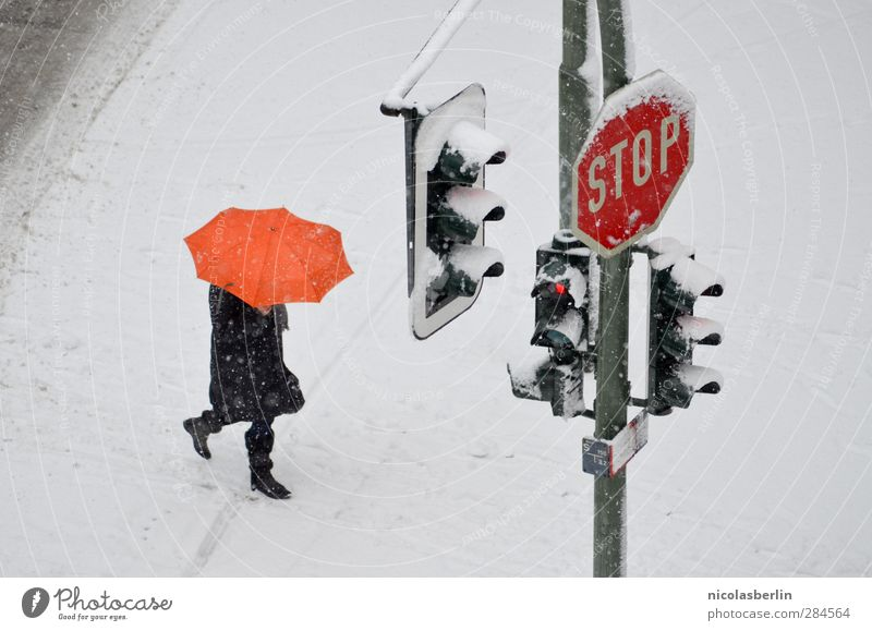 Schnee von gestern Winter Mensch 1 Klima Klimawandel Wetter schlechtes Wetter Unwetter Eis Frost Schneefall Fußgänger Straße Ampel Verkehrszeichen