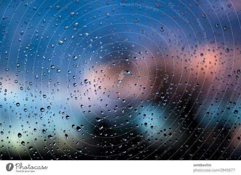 Regen Dämmerung Fenster Fensterscheibe Herbst nass Natur Niederschlag Orkan Park Regenwasser Wassertropfen Scheibe Sonnenuntergang Sturm Tropfen Wald Wetter