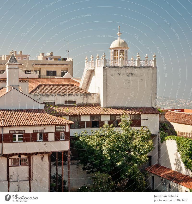 Bauwerke in La Orotava, Teneriffa Ferien & Urlaub & Reisen Tourismus Haus Stadt Altstadt Architektur Fassade Balkon Fenster ästhetisch Kanaren Spanien
