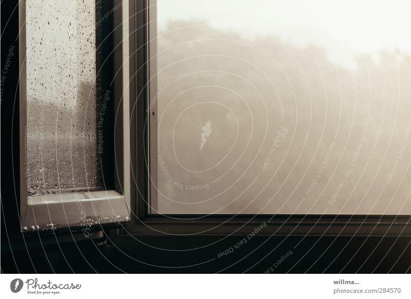 tristesse schlechtes Wetter Nebel Regen Fenster kalt grau Langeweile Traurigkeit Verzweiflung Frustration Stimmung offen Fensterblick Fensterscheibe lüften
