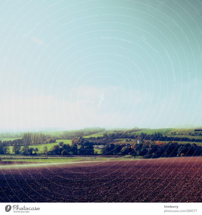 ruhetag Landwirtschaft Forstwirtschaft Umwelt Natur Landschaft Erde Himmel Wolken Pflanze Nutzpflanze Wiese Feld Hügel frisch blau Design Freiheit Frieden