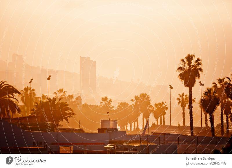 Stadtansicht Puerto de la Cruz, Teneriffa Palme Hochhaus Haus Kanaren Spanien Süden Hafenstadt Stadtzentrum Smog Nebel Wärme Sonne heiß trocken Klimawandel
