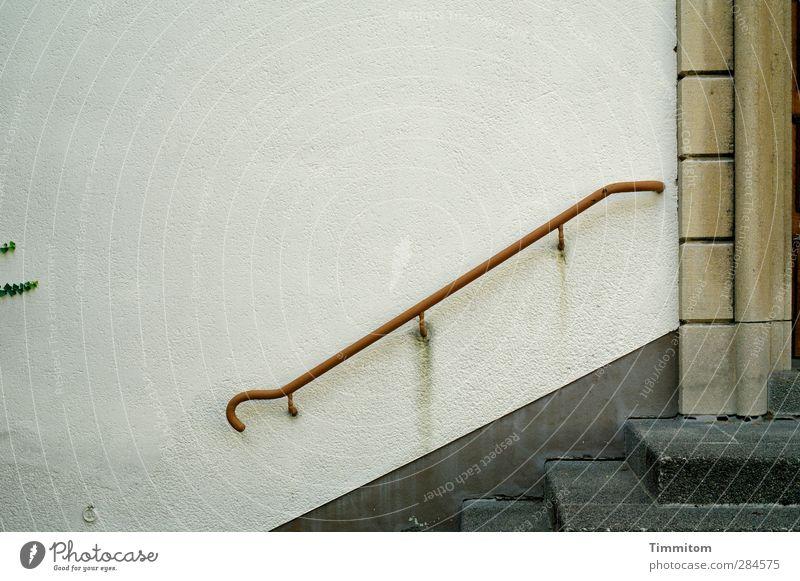 Steppin Out Häusliches Leben Haus Pflanze Efeu Mauer Wand Treppe Stein Metall grau rot Gefühle Hilfsbereitschaft Treppengeländer Eingang Farbfoto