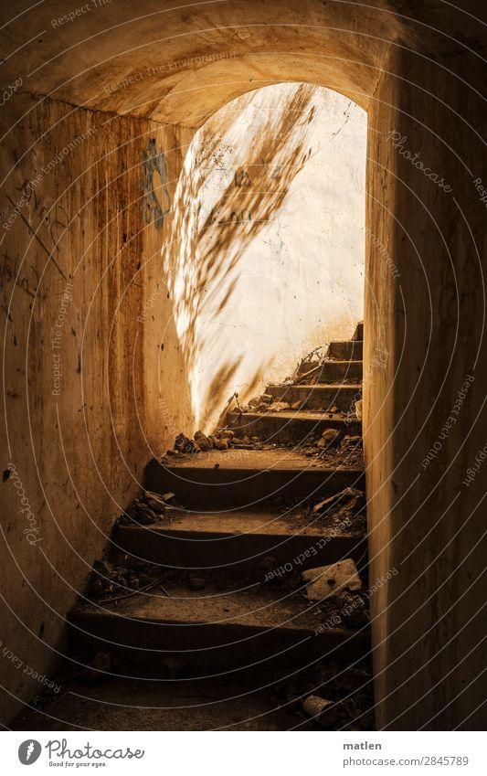Zum Licht empor... Menschenleer Industrieanlage Ruine Mauer Wand Treppe alt dreckig dunkel historisch kaputt braun gelb weiß Schattenspiel Militär Fluchtweg