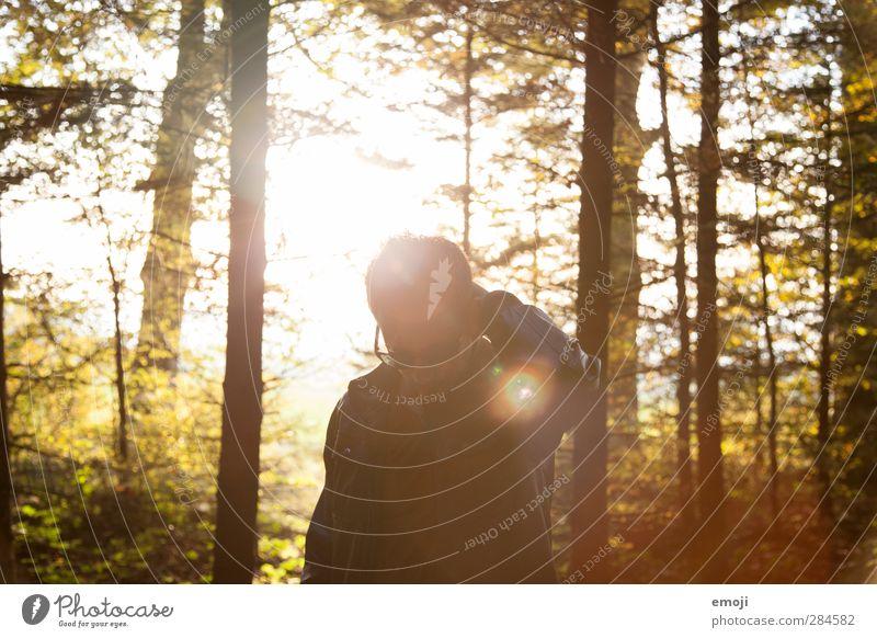 autumn leaves maskulin Junger Mann Jugendliche 1 Mensch 18-30 Jahre Erwachsene Umwelt Natur Herbst Schönes Wetter Wald trendy Farbfoto Außenaufnahme Dämmerung