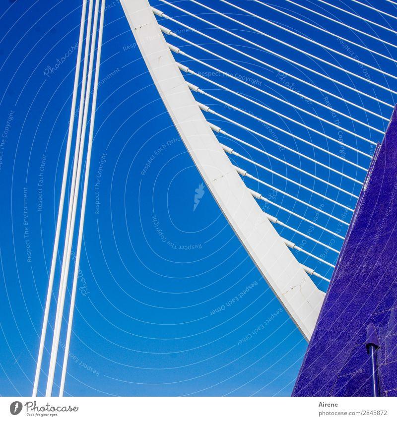 IIII\\\\\\\\\/ Museum Architektur Kultur Wolkenloser Himmel Valencia Bauwerk Sehenswürdigkeit Drahtseil Stahl Linie parallel Neigung ästhetisch außergewöhnlich