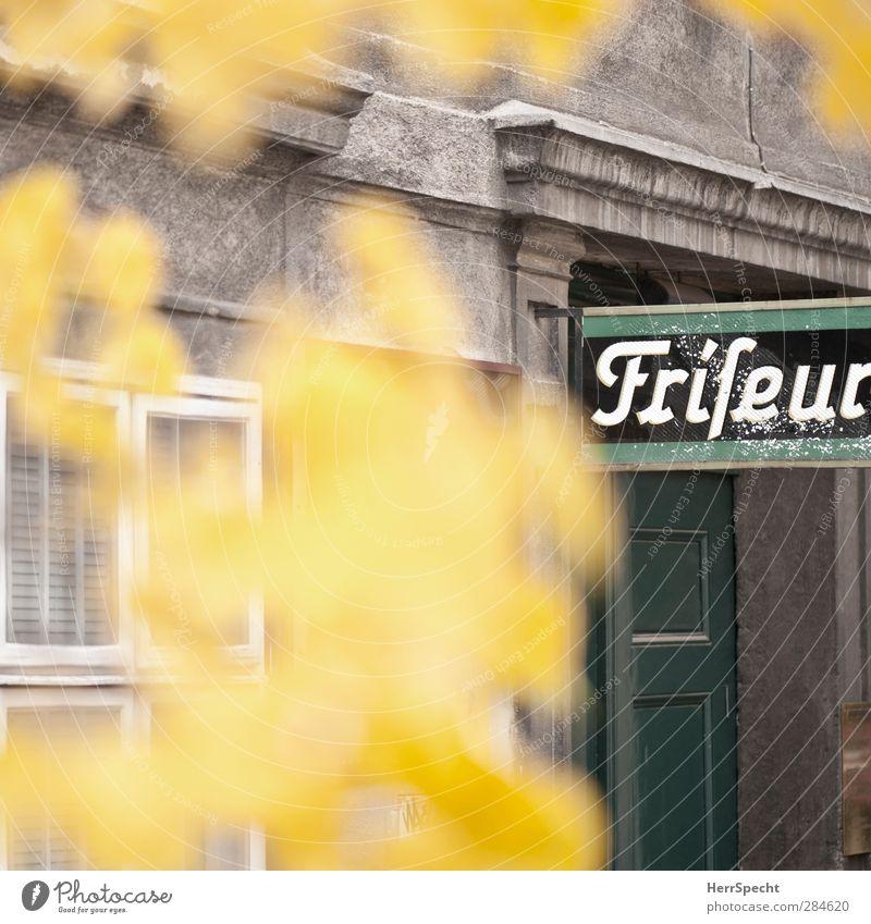 'nen Herbstschnitt, bitte... grün Baum Blatt Haus gelb Fenster grau Gebäude Stein Tür Fassade Schilder & Markierungen Schriftzeichen Hinweisschild Bauwerk
