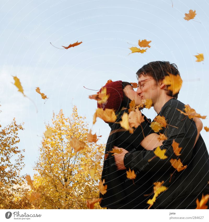 Laubkuss Paar Partner Natur Herbst Schönes Wetter Blatt Küssen Lächeln Umarmen frei Glück natürlich Wärme Freude Fröhlichkeit Zufriedenheit Lebensfreude