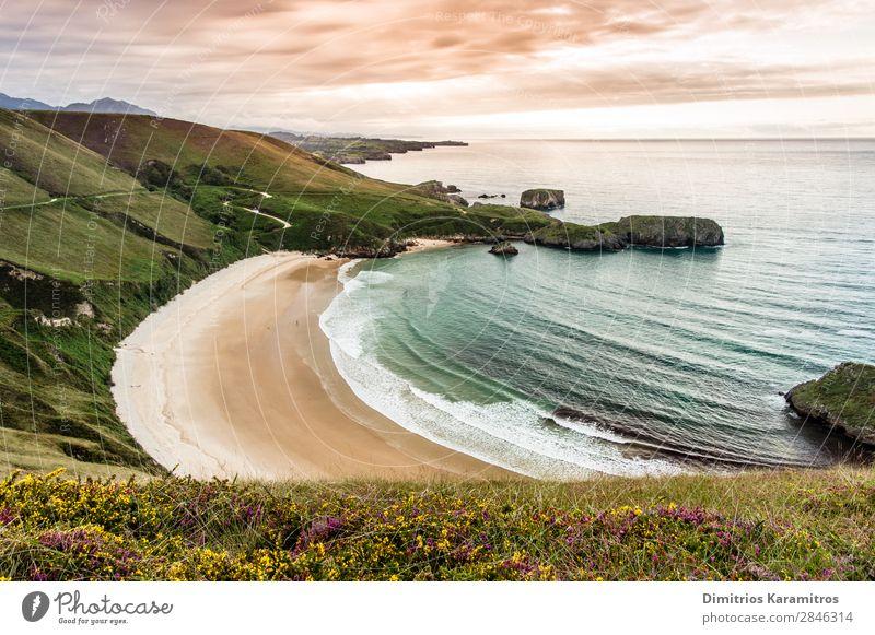 Torimbia Strand in Spanien Umwelt Natur Landschaft Sand Wasser Himmel Wolken Sommer Schönes Wetter Blume Wellen Küste genießen Ferien & Urlaub & Reisen exotisch