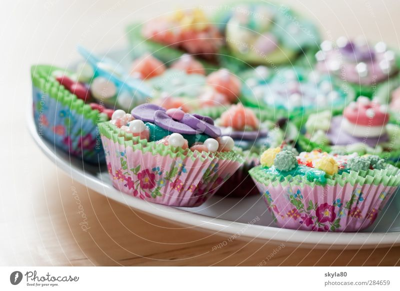 Zuckerwelt Essen Dekoration & Verzierung süß Speise Kochen & Garen & Backen Süßwaren Foodfotografie Schokolade Zucker Dessert Muffin Cupcake